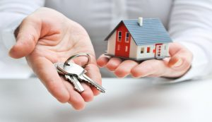 Professional, affordable rental property management in Auckland